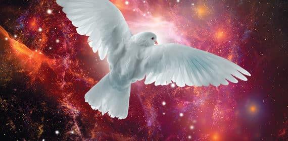 «Крайон. Вашу мечту исполнит Вселенная!» Тамара Шмидт